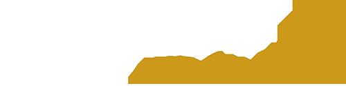 Vasist Property Logo